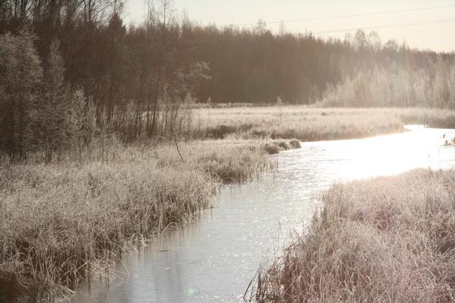 Joki pakkasaamuna