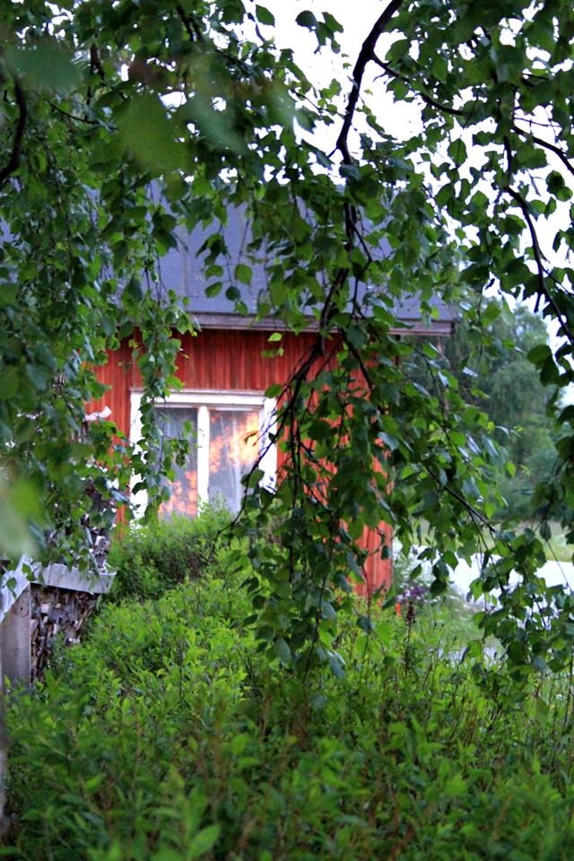 Heijastuksia ikkunassa