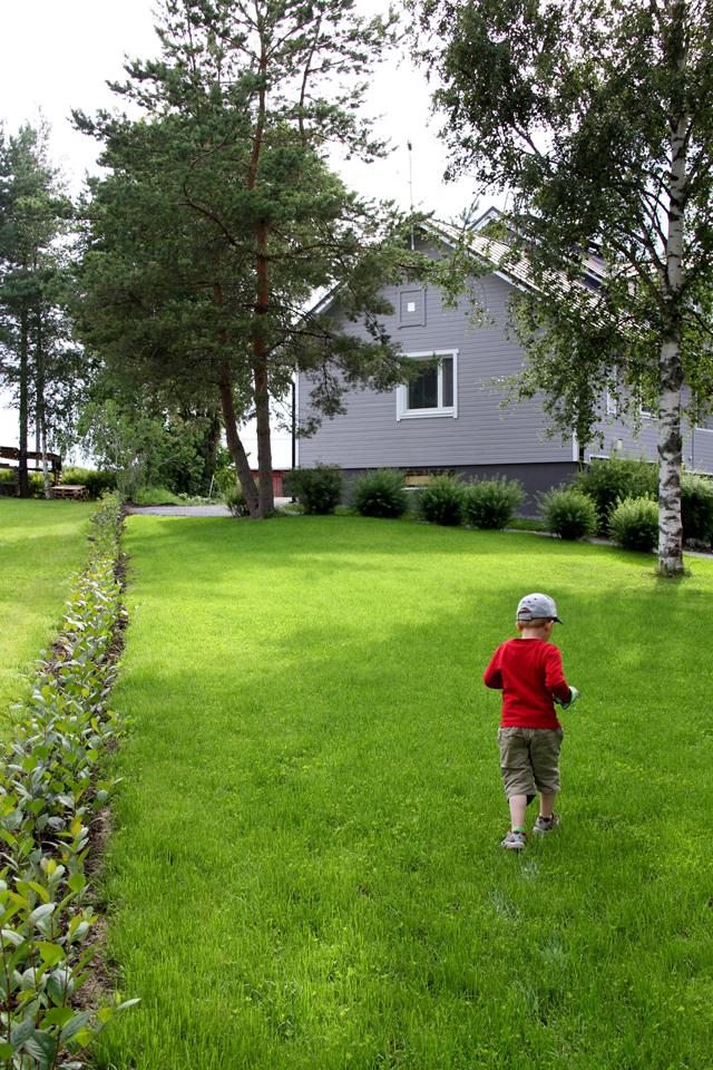 Uusi nurmikko