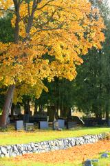 Hautausmaan väriloistoa