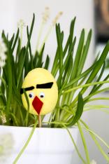 Vihainen muna